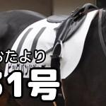 【グラおた31号】ライズライン、若駒賞(盛岡)制覇!/ビッグバンドジャズ2勝目/レース結果/競走馬登録
