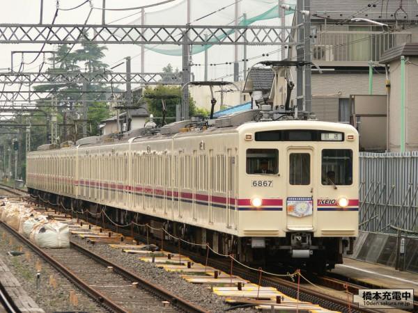 Tama Zoo Train 50周年記念号 2008/05/05 国領