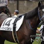 【グラおた91号】新馬戦スタート/6月7日・8日の出馬表