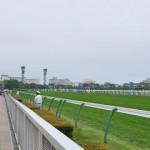 【グラおた104号】ゴールドシェンロン2勝目/先週の結果/今週の競走馬登録