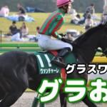 【グラおた123号】いちょうステークス観戦記/先週の結果/競走馬登録