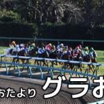 【グラおた136号】今週から中山・阪神・中京開催/12月6日・7日の出馬表