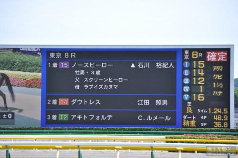 ノースヒーロー 2015/06/07 東京競馬場
