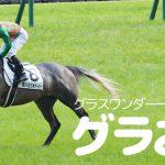 【グラおた330号】サクラメガワンダー産駒ユウキビバワンダー、中山大障害に出走