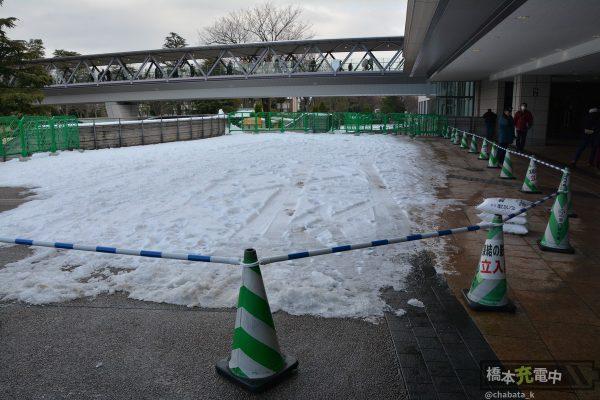 2018/01/28 東京競馬場 パドック