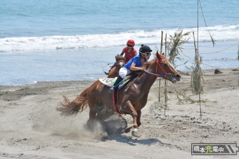砂浜を走る馬が見たい!静岡県「さがら草競馬大会」へ行く(前編)