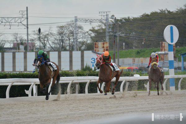 カツオフウミ 2018/09/07 笠松競馬場