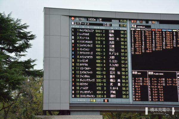 第22回富士ステークス 出走馬