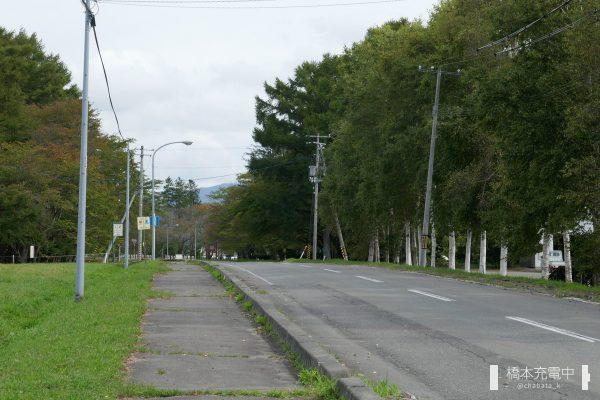 二十間道路桜並木入口