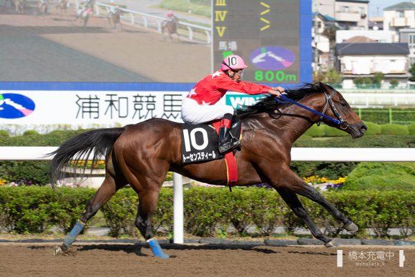 2019/11/04 浦和6R 金沢競馬特別 トーセンスティール