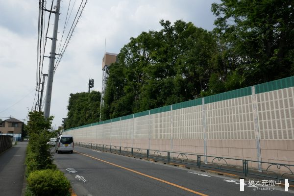 東京競馬場沿いの道