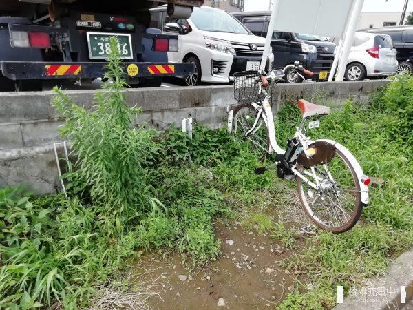 二ヶ村緑道(是政)ステーション